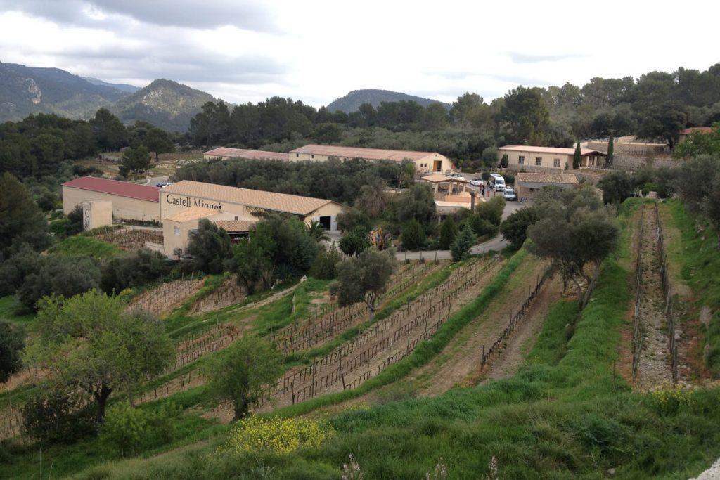 Weingut Castell Miquel