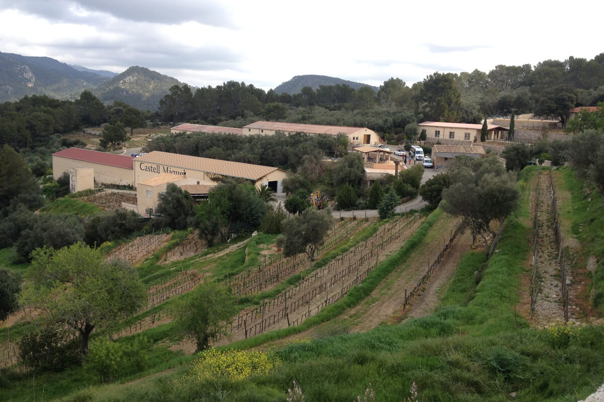 Weingut Mallorca Castell Miquel